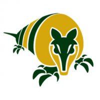 Segundo Logo de GreenFlex